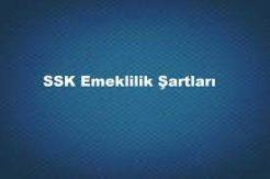 SGK 4A Emeklilik Şartları Nelerdir?