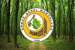 2021 OGM personel alımı başladı!